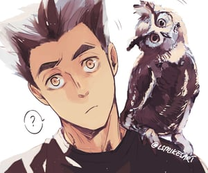 haikyuu, anime, and owl image