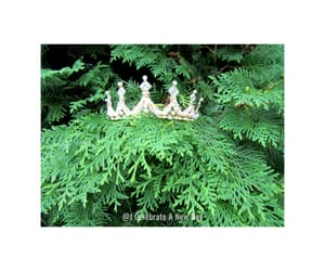 crown, evergreen, and quotes image