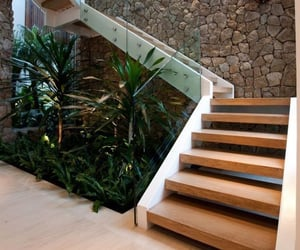 architecture, design, and plants image