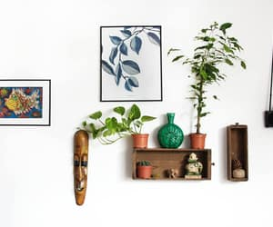cozy, plants, and decor image