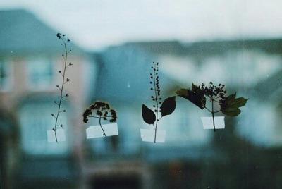 flowers, sad, and vintage image