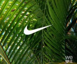 green, leaf, and ًًًًًًًًًًًًً image