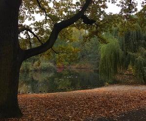 autumn, beautiful, and berlin image