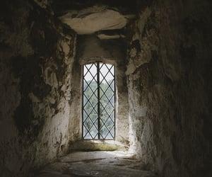dark, window, and dark academia image
