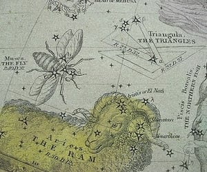 aesthetic, archive, and constellations image