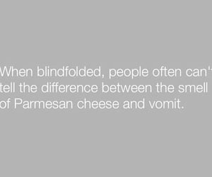 blindfolded, funny, and parmesan cheese image