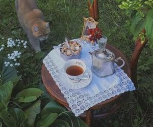 aesthetic, cat, and cottagecore image