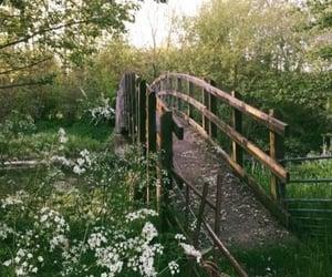 cottagecore, aesthetic, and bridge image