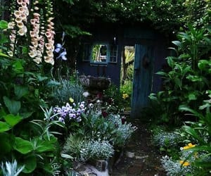 aesthetic and garden image