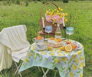 picnic and nature image