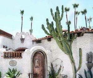 beautiful, cactus, and decor image