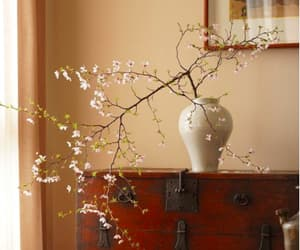 branches, Ceramic, and cherry blossom image