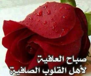 Image by saad