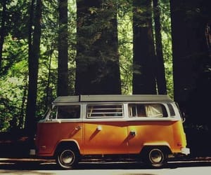 forest, car, and nature image