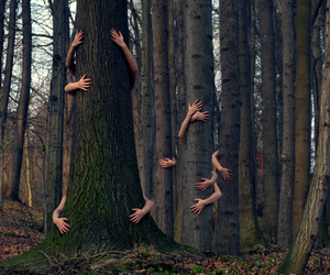 Image by Manuel Barahona ♛