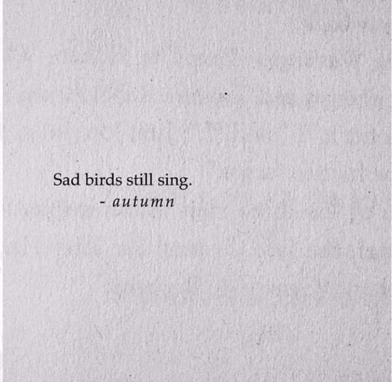 quotes, sad, and words image