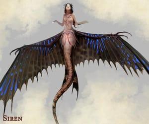creature, mythology, and siren image