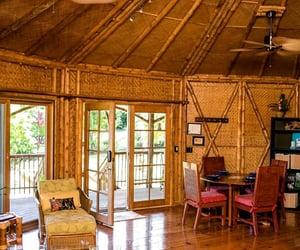 Aloha, rattan, and bamboo image