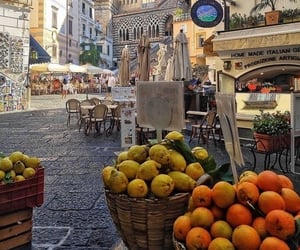 theme, fruit, and travel image