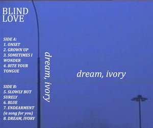 alternative, indie, and dream ivory image