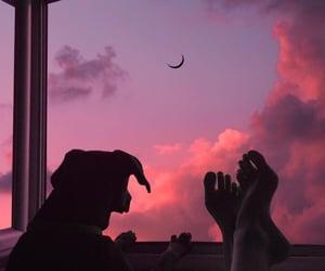 sky, dog, and sunset image