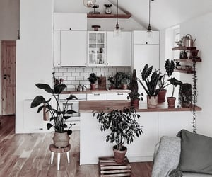 aesthetic, chic, and decor image