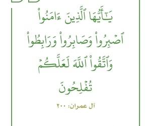 allah الله, الإسلام islam, and سورة آل عمران image