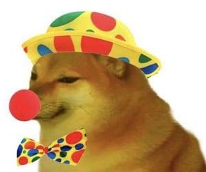 clown, doge, and meme image