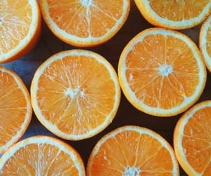 archive and oranges image