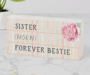 sisters, sister best friend, and farmhouse signs image
