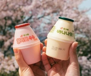 aesthetic, korea, and milk image