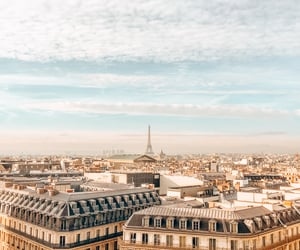 eiffel tower, morning, and paris image