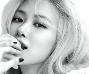 magazine, kpop, and rose image