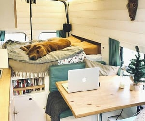 cozy, dog, and home image