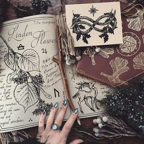 aesthetic, witch, and book of shadows image