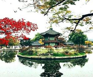 architecture, korea, and naturaleza image