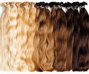 hair extensions, hair wigs, and hair patch image