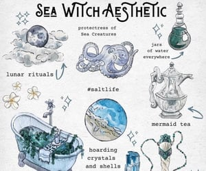 sea witch and witch image