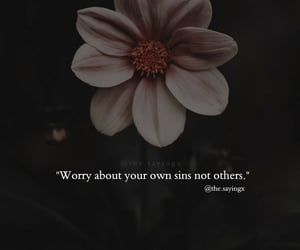 quotes, sayings, and thoughts image
