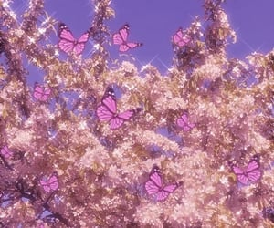 aesthetic, butterflies, and girly image