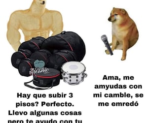 music, rock and roll, and perro grande image