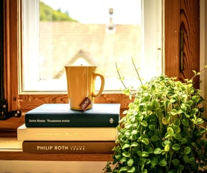 books, home, and drink image