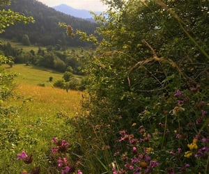 Georgia, pretty, and view image