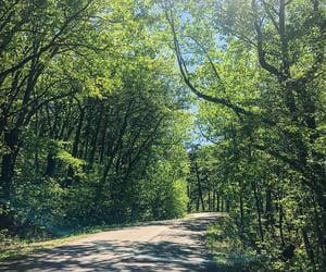 beautiful, Georgia, and green image