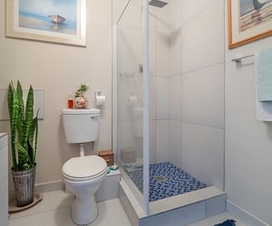 bath and shower image