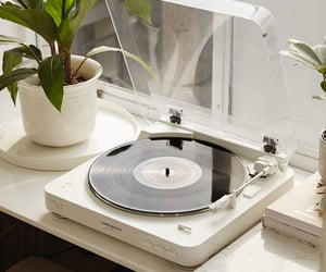 music, vinyl, and white image