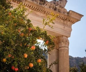 nature, Greece, and summer image
