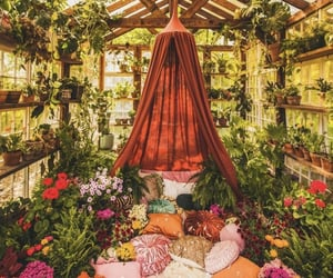 flowers, boho, and greenhouse image