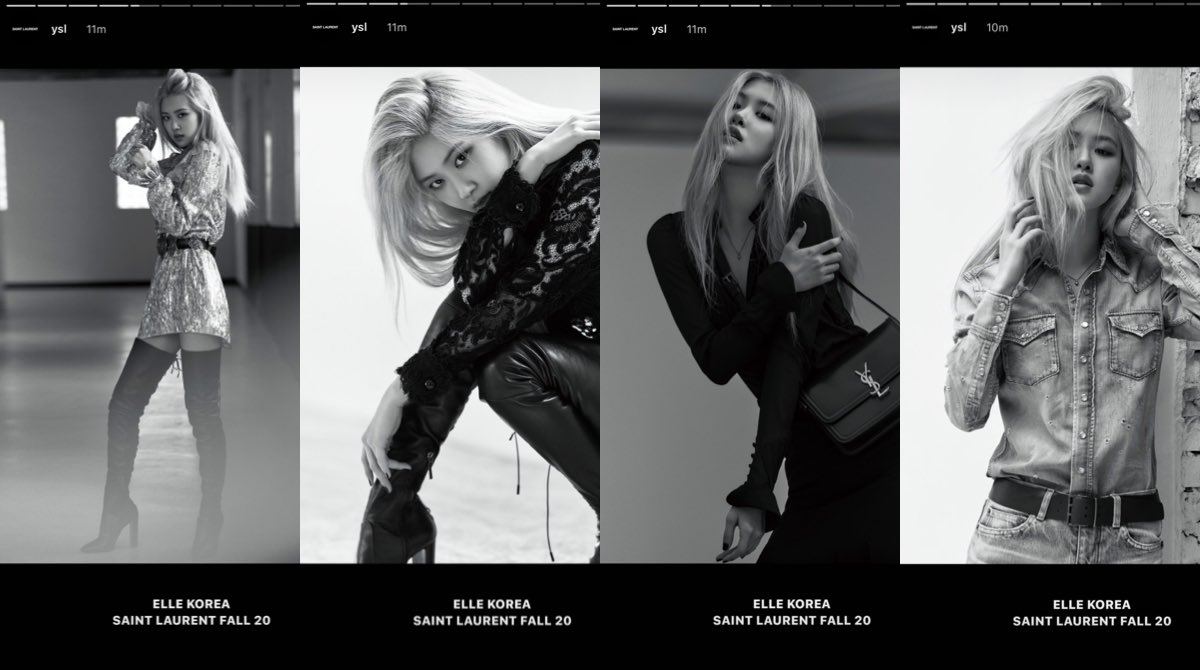 rose, blackpink, and YSL image