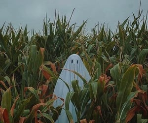 aesthetic, ghost, and Halloween image